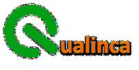 Qualinca > Logo